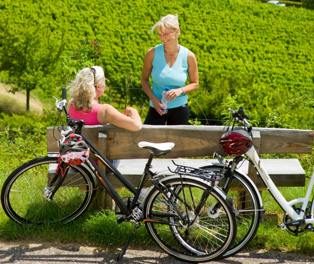 Cycling Packages Along the Wine Route