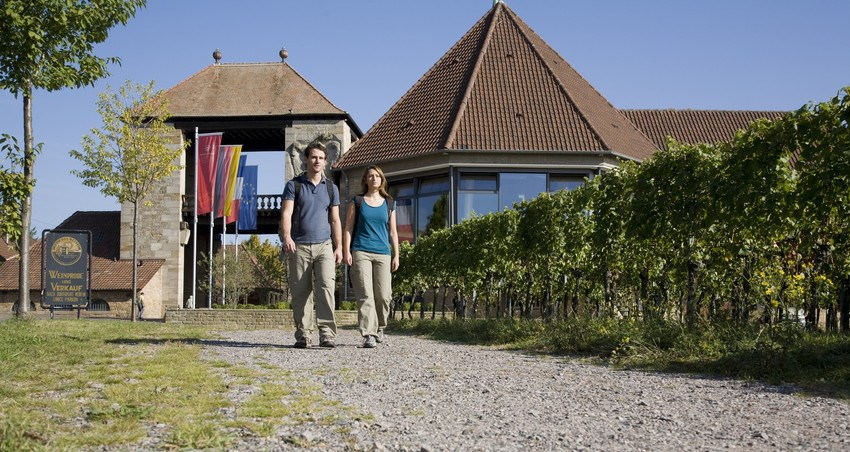 The German Wine Route