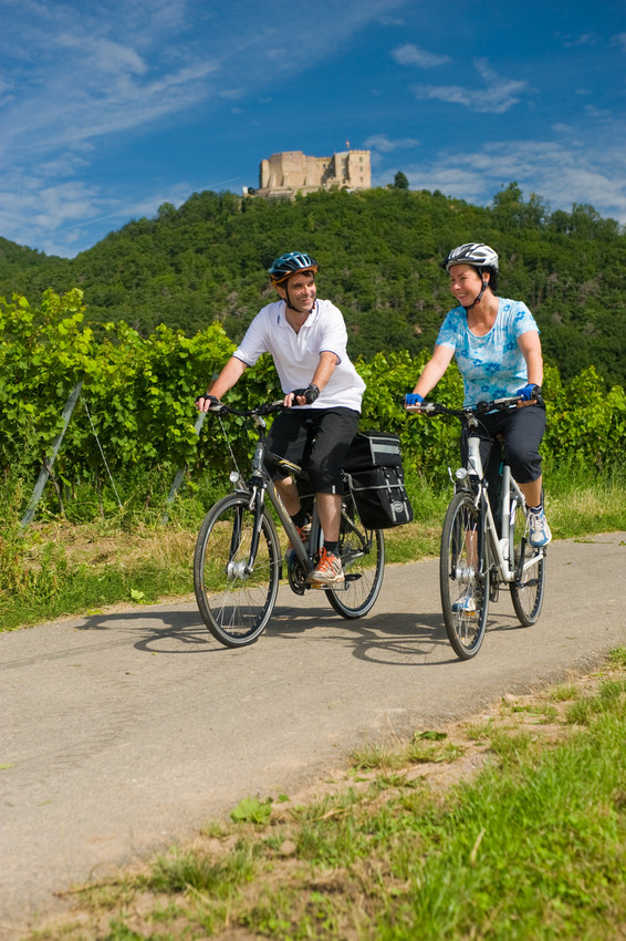Cycle Paths along the German Wine Route