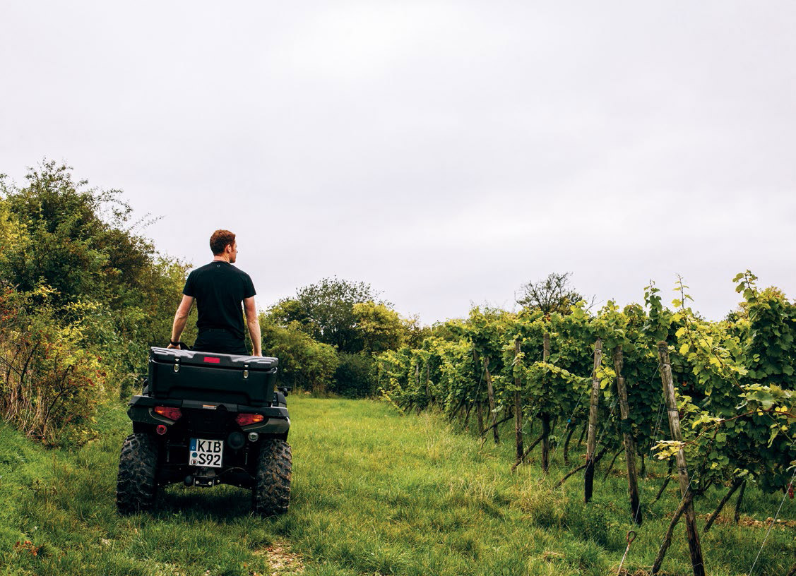 On the hunt for the perfect wine